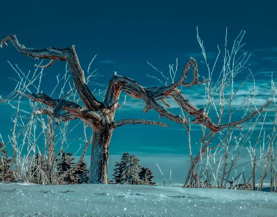 klimatyzacja zimą